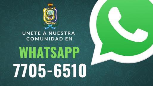54434168_2049697608459641_1660665378629484544_n