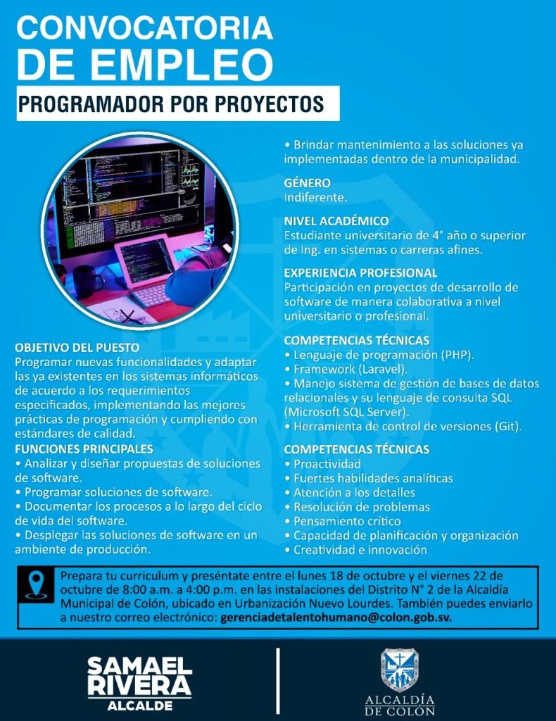 Programador por Proyectos